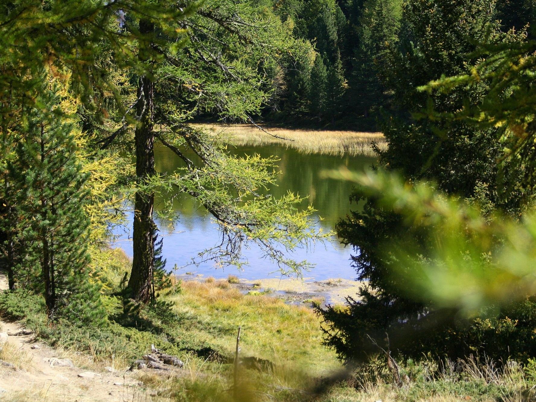 Wallis Landschaft