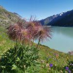 7-tägiger Luxusurlaub im Saastal und St. Moritz Engadin inklusive Panoramazügen
